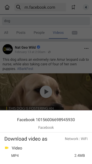 how to copy a video from facebook