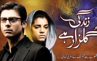 pakistani patriarchal dramas