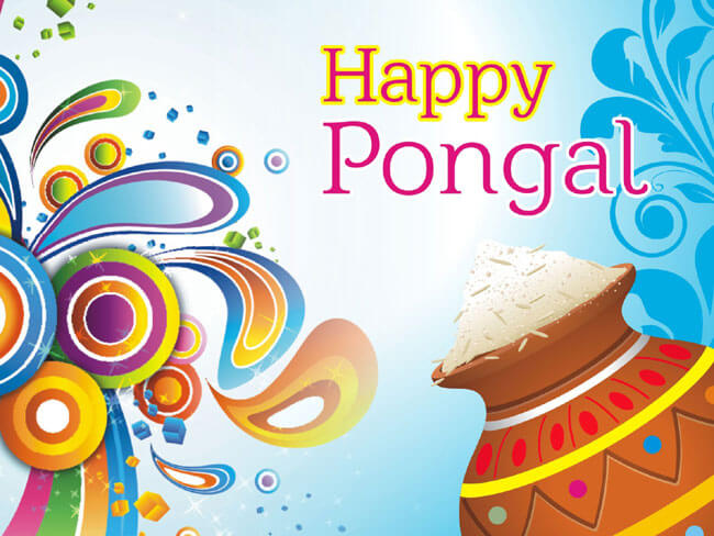 pongal festival pictures