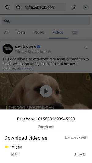 salvar video facebook