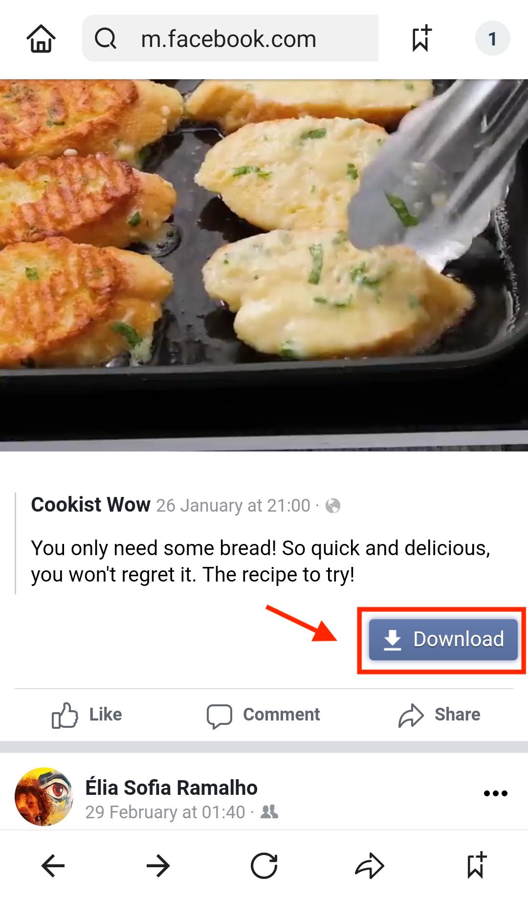 aplicativo para salvar vídeo do facebook