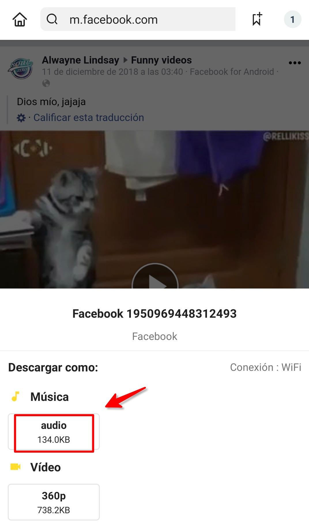descargar pelicula de facebook en español latino