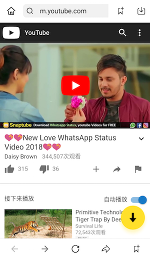 download whatsapp video love