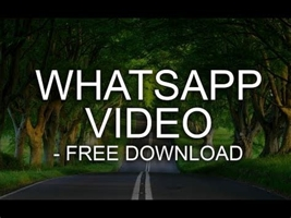 whatsapp video comedy download