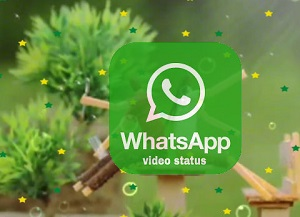 Download Whatsapp Video Love Status To Share With Loved One